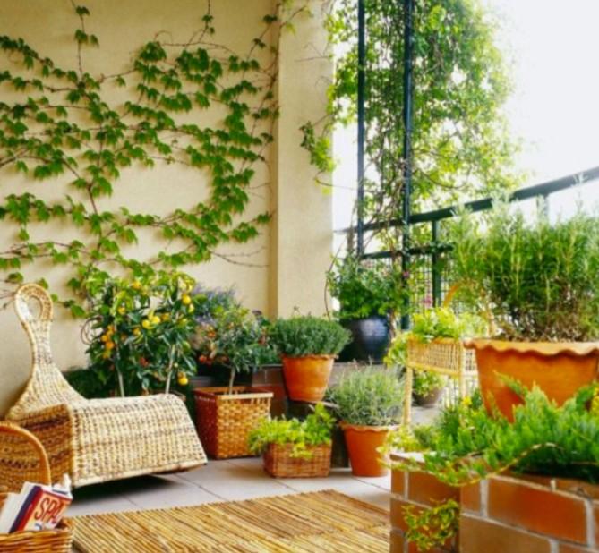 μπαλκόνι γεμάτο φυτά εντυπωσιακό μπαλκόνι
