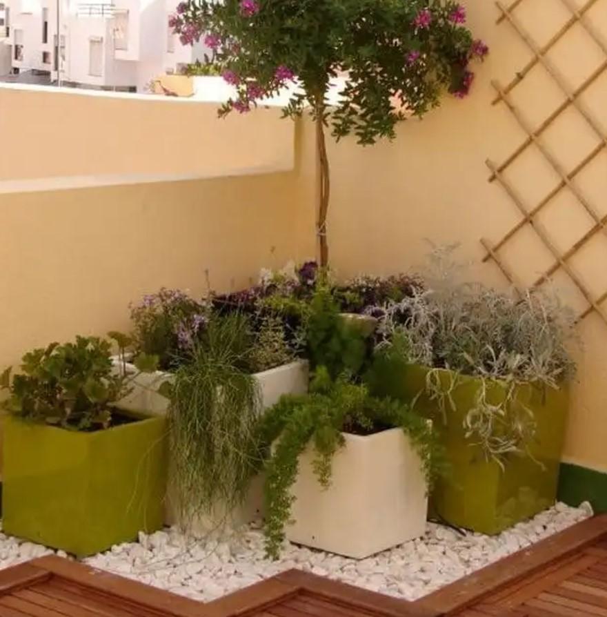 γωνία με λουλούδια σε μικρό μπαλκόνι
