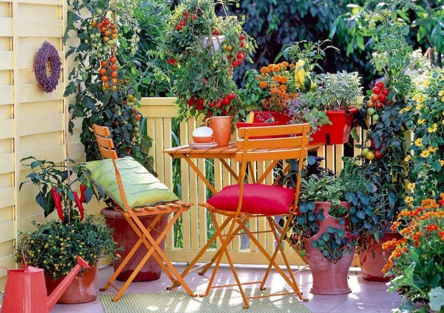 χρωματιστή βεράντα πολλά φυτά