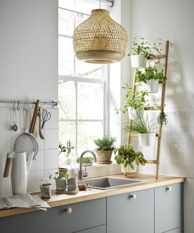 διακόσμηση κουζίνας με φυτά