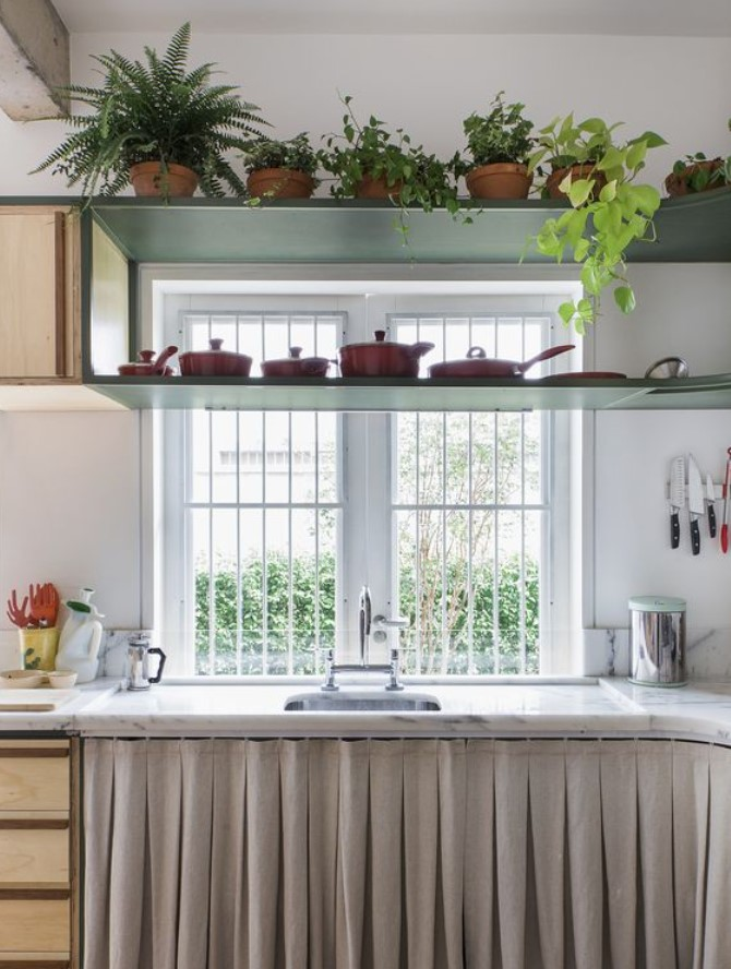 φυτά στη κουζίνα