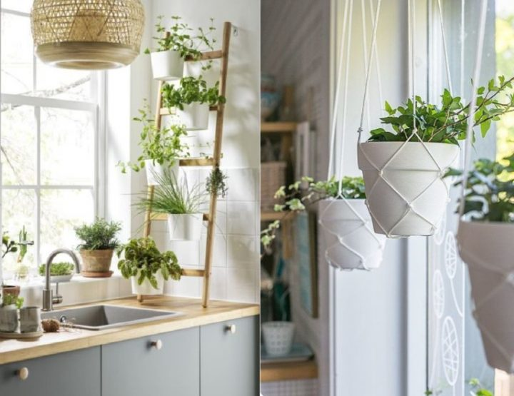 Πρωτότυπη διακόσμηση κουζίνας με φυτά εσωτερικού χώρου!