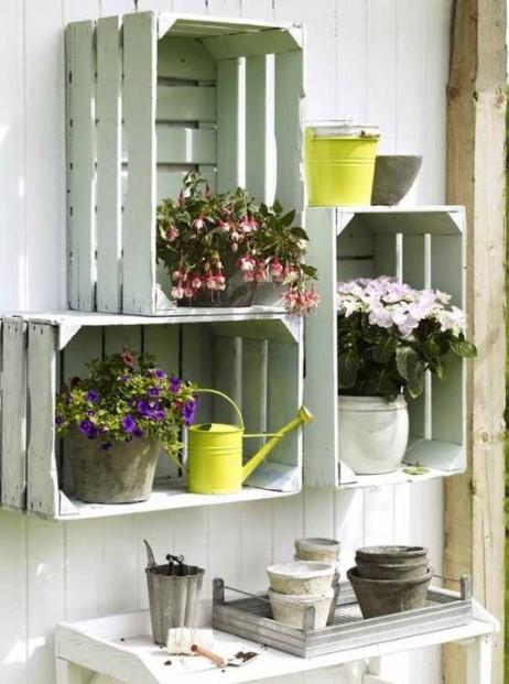 καφάσια τοίχος φυτά
