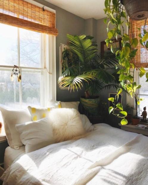 κρεβάτι φοίνικος αρέκα φυτά κρεβατοκάμαρα