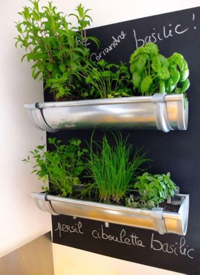 μινι κήπος στη κουζίνα