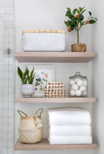 μπάνιο ραφιέρα φυτά