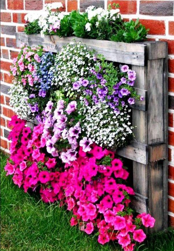 λουλούδια σε ξύλινη παλέτα στο κήπο