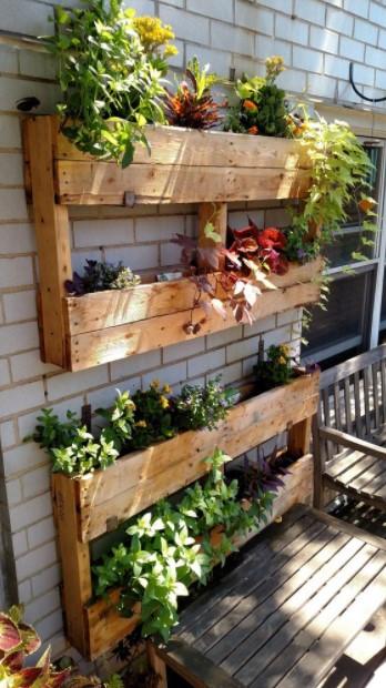 παλέτες λουλούδια τοίχο τοίχο μπαλκονιού