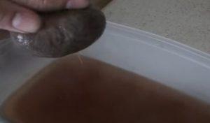 σούρωμα λιναρόσπορου
