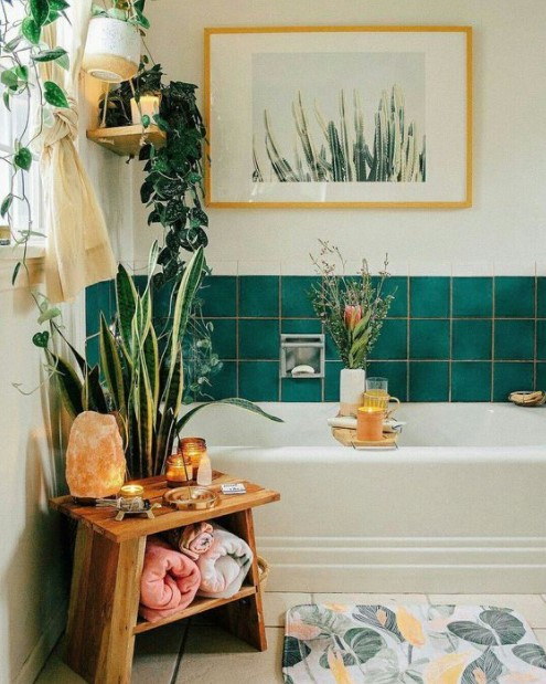 μπάνιο φυτά πίνακας