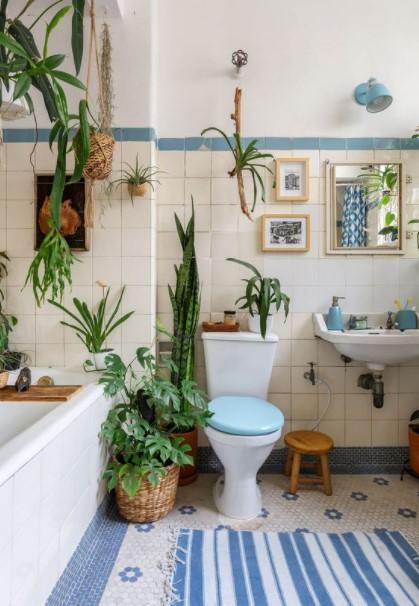 μπάνιο πολλά φυτά