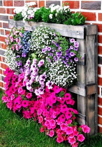 παλέτες πολύχρωμα λουλούδια δημιουργικές γλάστρες