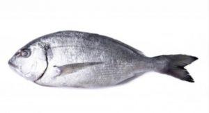 ψάρι για απώλεια βάρους