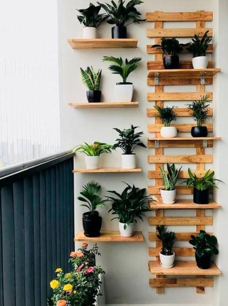 ράφια μπαλκόνι φυτά