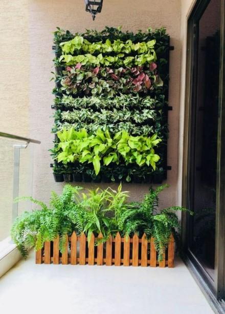 φυτά τοίχος