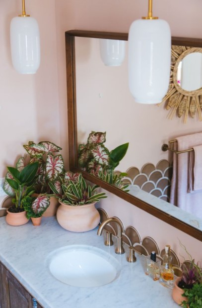 γλαστράκια φυτά πάγκος μπάνιου