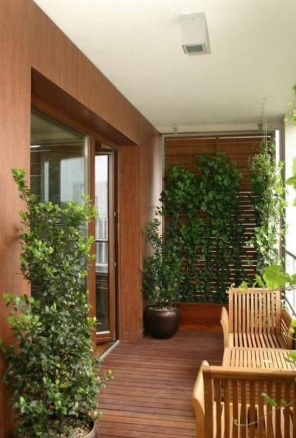 ξύλινο μπαλκόνι αναρριχώμενα φυτά