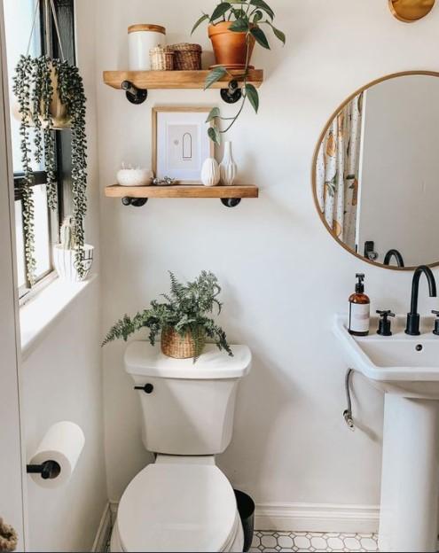 μπάνιο ράφια φυτά