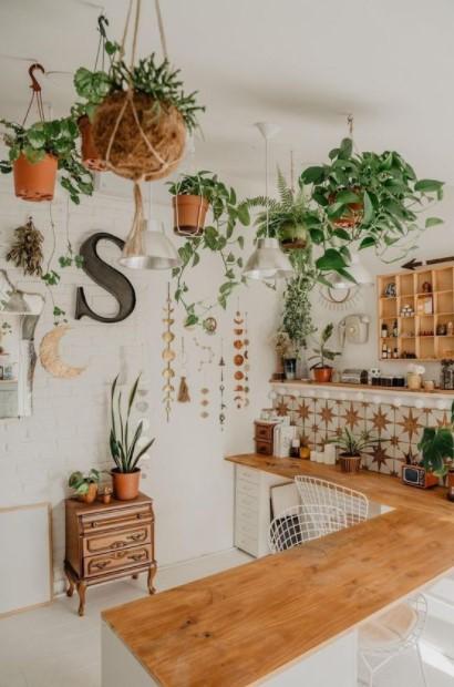 κρεμασμένα φυτά κουζίνα
