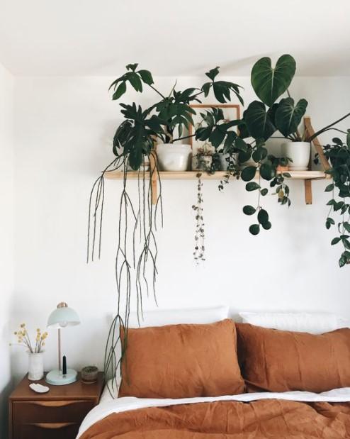 κρεβάτι ράφι τοίχος φυτά διακοσμήσεις τοίχους κρεβατοκάμαρας