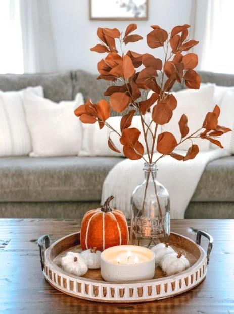 πορτοκαλί αποξηραμένο φυτό δίσκος
