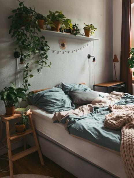 κρεβάτι ράφια πολλά φυτά