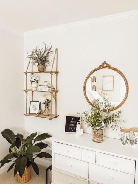 συρταριέρα κααθρέπτης φυτό